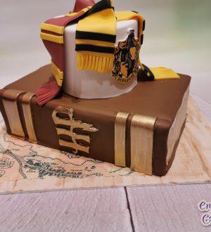 Harry potter taart met boek