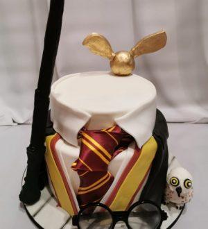 Harry potter taart met uil