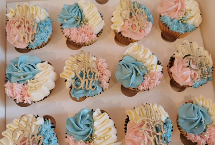 he or she gender reveal cupcakes