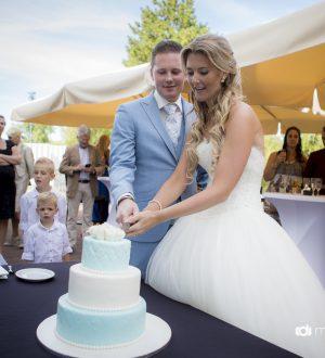 Bruidstaart lichtblauw